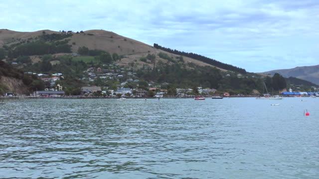 waterfront - akaroa, new zealand - akaroa stock videos & royalty-free footage