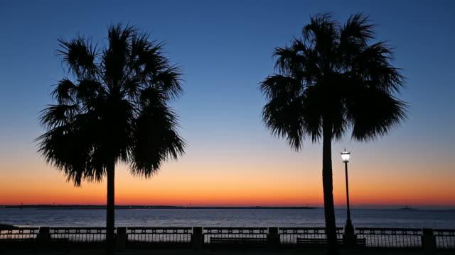 vídeos y material grabado en eventos de stock de parque waterfront - carolina del sur