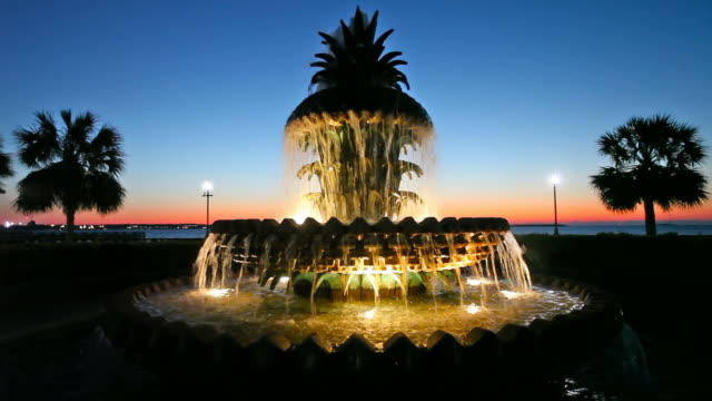 waterfront park - south carolina stock videos & royalty-free footage