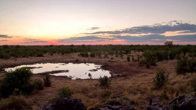 WS DS Waterhole In Namibian Savannah