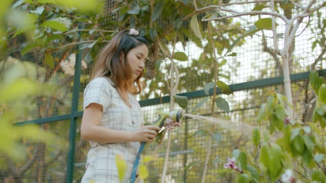 植物に水をやる - 園芸学点の映像素材/bロール