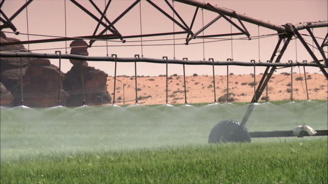 watering grass in the desert 02 - irrigation equipment stock videos & royalty-free footage