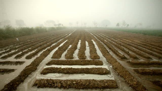 watering in agricultural plowed field. - farm stock videos and b-roll footage