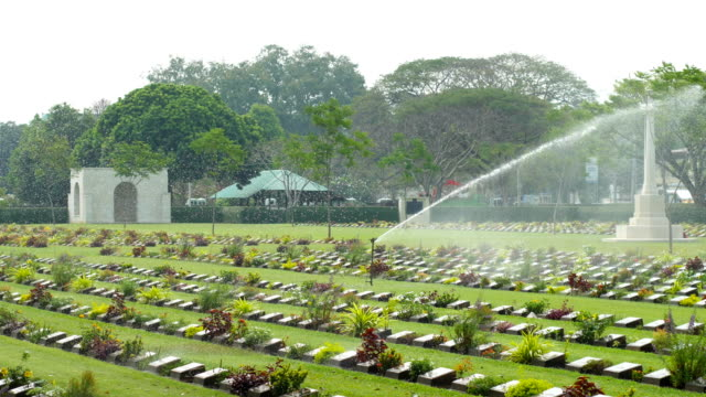 watering in green graveyard - remembrance sunday stock videos & royalty-free footage