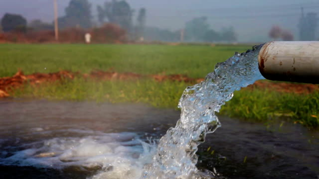 watering in the green field using tubewell - water conservation stock videos & royalty-free footage