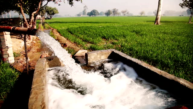 watering in the green field using tubewell - irrigation equipment stock videos and b-roll footage