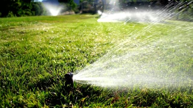 芝生のスプリンクラー潅漑に水をまく - ゴルフ場点の映像素材/bロール