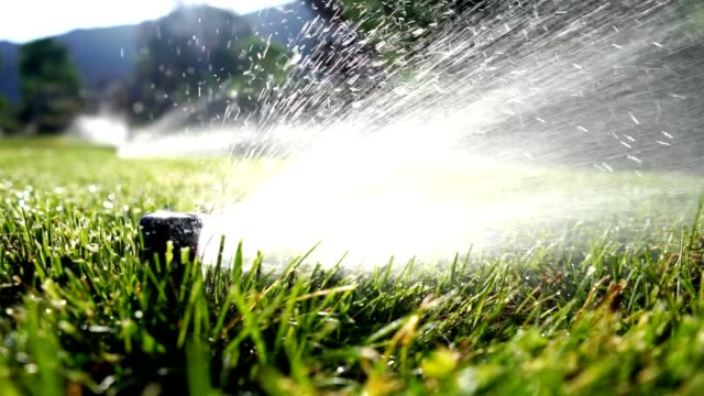 watering lawn sprinkler irrigation - irrigation equipment stock videos & royalty-free footage