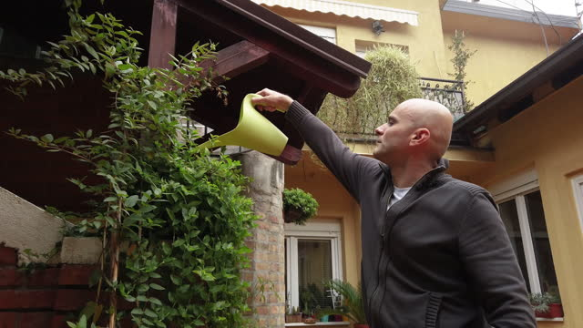 vídeos de stock e filmes b-roll de watering plants in backyard - mid adult men