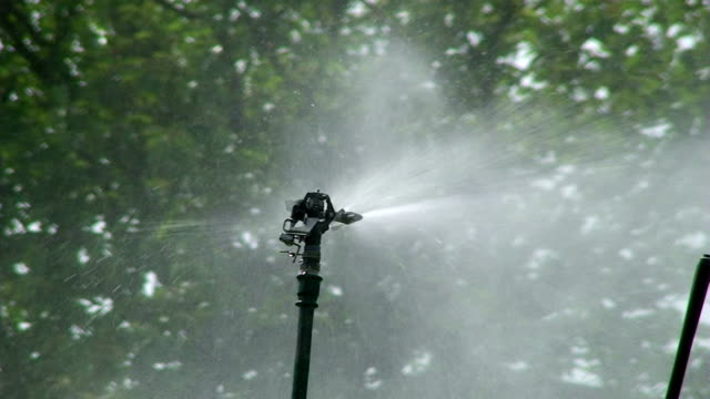 stockvideo's en b-roll-footage met watering system - boomgaard