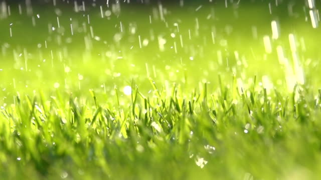 HD SUPER SLOW MO: Watering The Grass