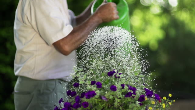slow motion: watering - watering can stock videos and b-roll footage