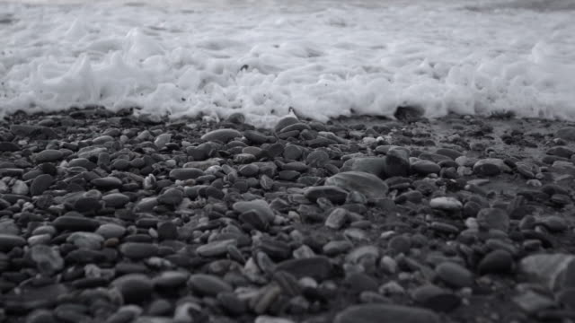 SLOW MOTION: Waters Edge