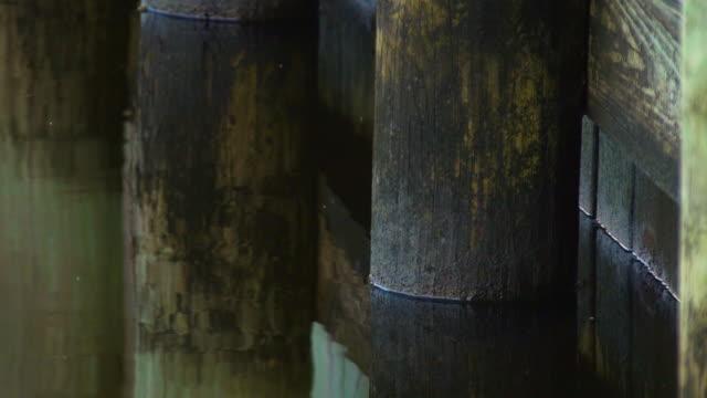 vídeos de stock e filmes b-roll de águas edge - water's edge