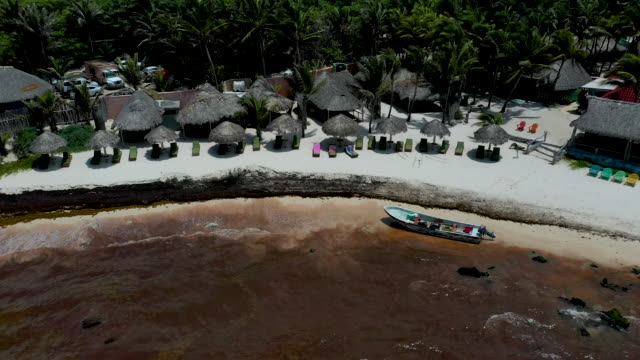 waters near a tulum resort are brown from sargassum a seaweedlike algae on june 15 2019 in tulum mexico mexico's riviera maya caribbean tourist towns... - tulum mexico stock videos & royalty-free footage