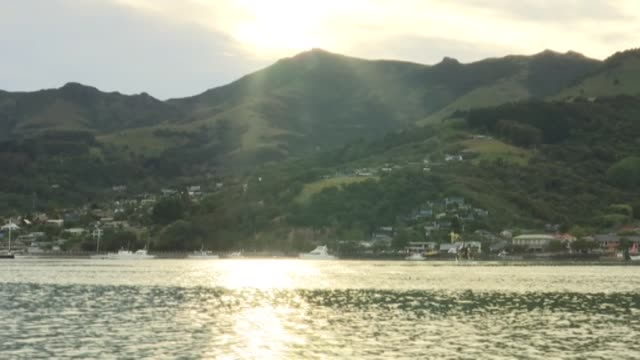 waters of akaroa harbour with sunlight reflecting on surface in early morning - akaroa stock videos & royalty-free footage