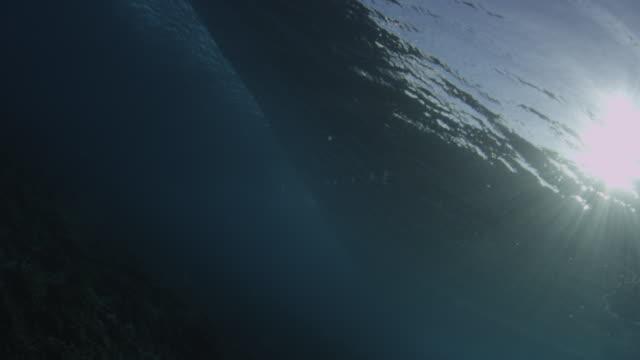 vídeos y material grabado en eventos de stock de wave at teahupoo from underwater - territorios franceses de ultramar