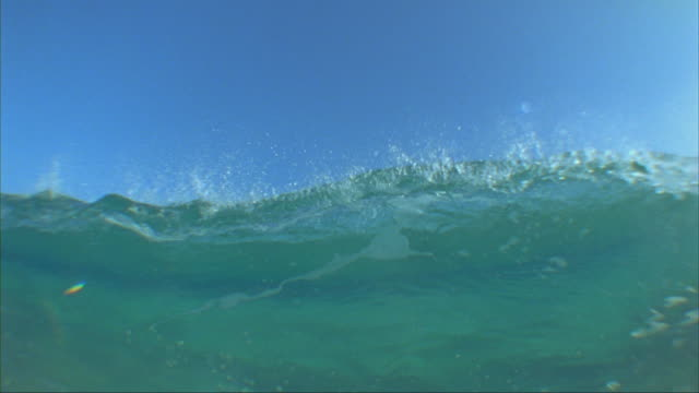 SLO MO CU Wave breaking over camera, Oahu, Hawaii, USA