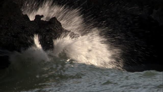 Wave breaks onto rocky coast, Madagascar