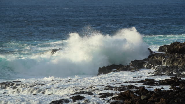 Wave crashing against rocks at coast. Tenerife, Canary Islands, Atlantic Ocean, Atlantic Islands, Spain.
