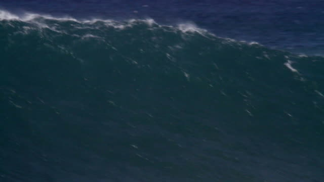 MS PAN Wave crashing on reef  / Haleiwa, Hawaii, United States