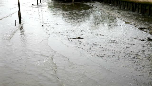 vidéos et rushes de vague d'eaux noires dans le fleuve, la pollution - un seul objet