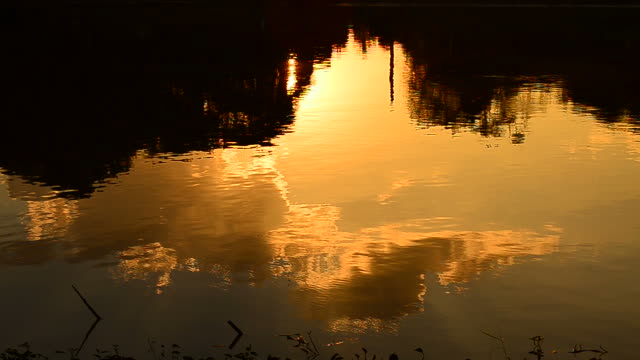wave pattern on the water with sunset reflection - full hd format stock videos & royalty-free footage