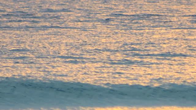 wave sea in ocean - pier stock videos & royalty-free footage