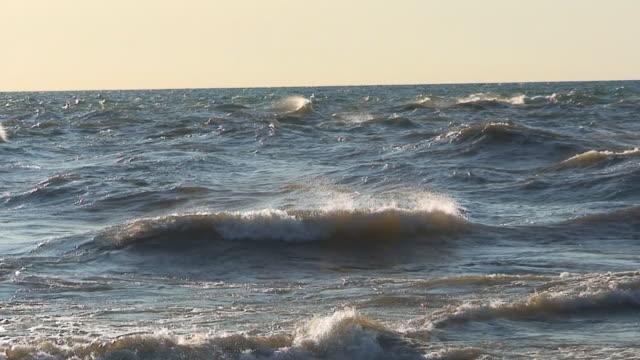 vídeos de stock, filmes e b-roll de ondas e gulls - áudio disponível online