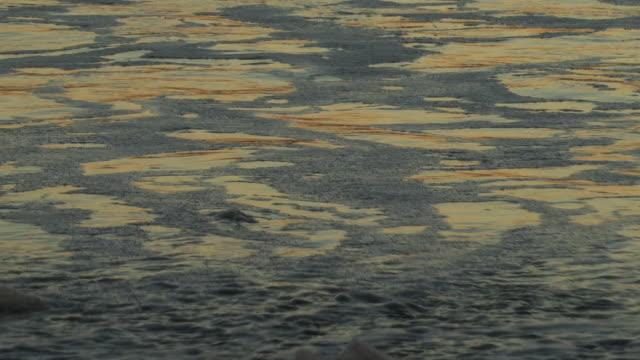 vídeos y material grabado en eventos de stock de waves break clumps of foam on a beach. available in hd. - santa bárbara
