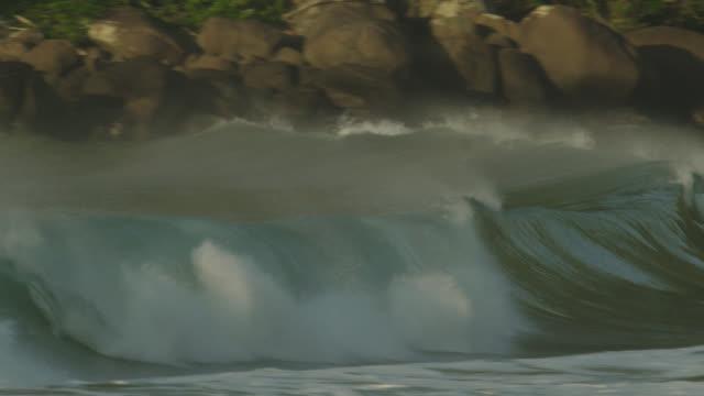 Waves break on beach near Atlantic forest.