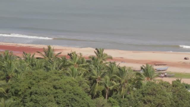 vídeos y material grabado en eventos de stock de waves break on the beach - árbol tropical