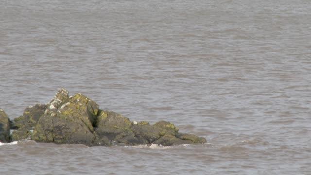 Waves brechen an einem felsigen Ufer
