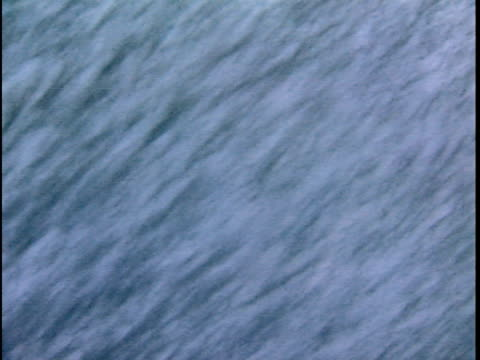 vidéos et rushes de ms waves breaking over ship bow in stormy weather in labrador sea, seen through window, atlantic ocean, newfoundland, canada - bow window