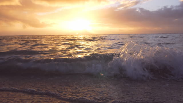 Waves coming onto the sandy shore at sunset