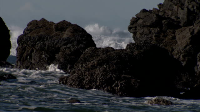 waves crash around rock formations on the oregon coast. available in hd. - oregon coast stock videos & royalty-free footage