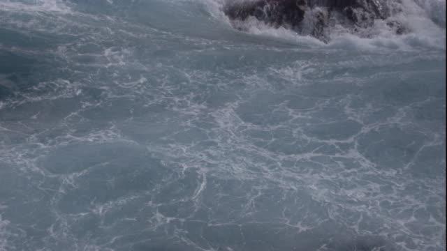 waves crash over rocks as birds fly above the spray. available in hd. - vattenfågel bildbanksvideor och videomaterial från bakom kulisserna