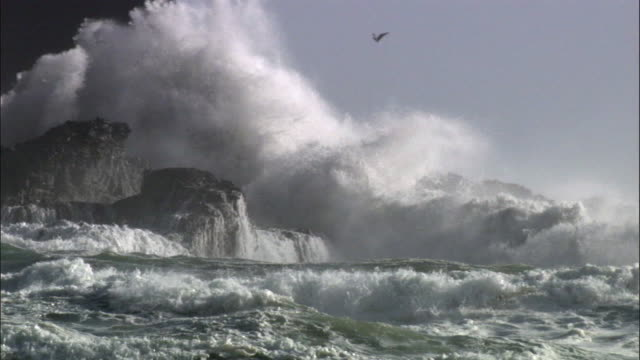 vídeos de stock, filmes e b-roll de waves crash over rocks during storm, new zealand - arrebentação