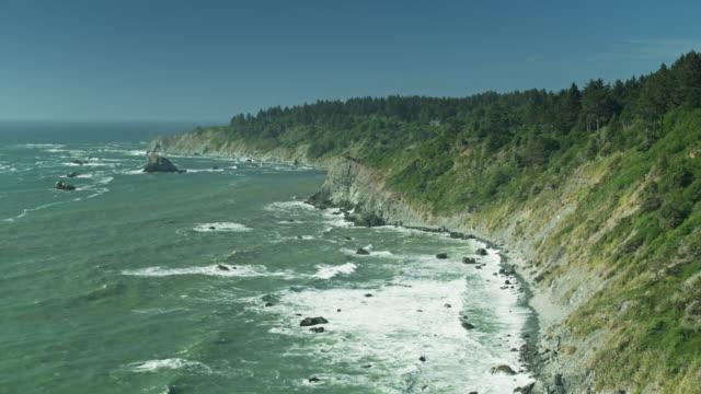 vídeos y material grabado en eventos de stock de olas chocando en acantilados debajo de las secuoyas del norte de california - drone shot - bosque de secuoyas