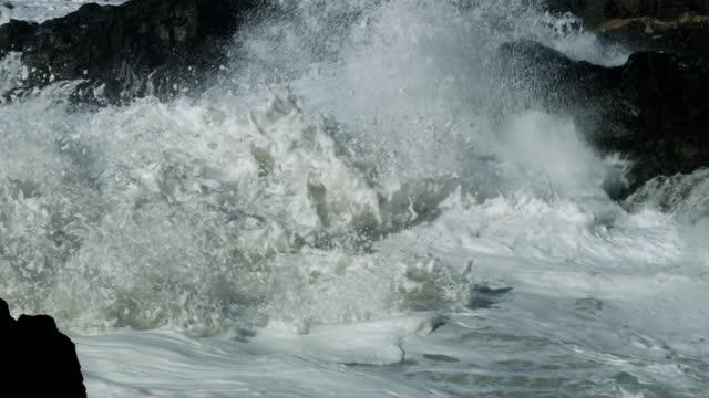 waves crashing on pacific coast with sea foam, oregon - wasserrand stock-videos und b-roll-filmmaterial