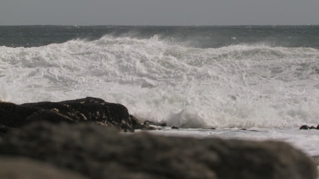 ms pan slo mo waves crashing on rock / elephant beach, falkland islands, falkland islands - falkland islands stock videos and b-roll footage