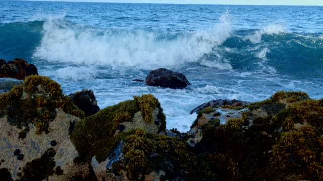 waves crashing to tidepools kauai hawaii - gezeitentümpel stock-videos und b-roll-filmmaterial