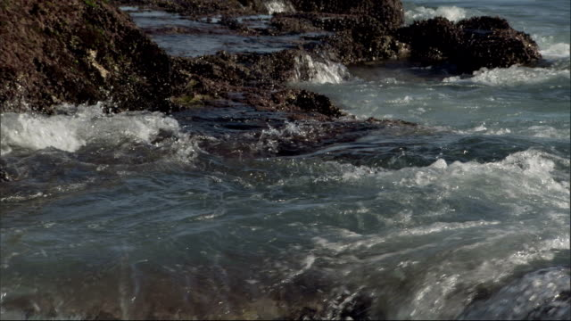 waves flow over boulders, forming small pools. available in hd. - gezeitentümpel stock-videos und b-roll-filmmaterial