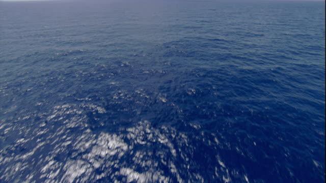 vídeos de stock e filmes b-roll de waves form ripples in the pacific ocean near australia. available in hd. - pacific ocean