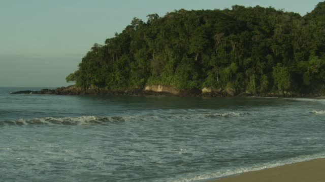 Waves lap at beach near Atlantic rainforest.