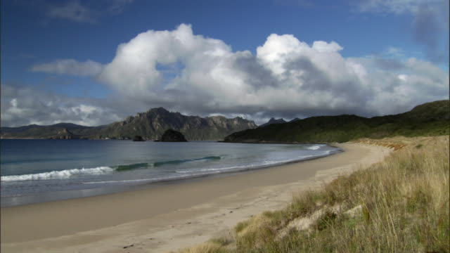 Waves lap onto beach, Codfish Island, New Zealand