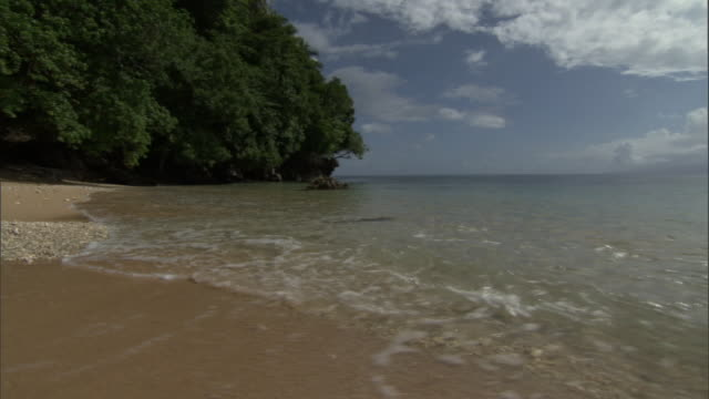 waves lap onto tropical beach, pentecost, vanuatu - pentecost stock videos & royalty-free footage
