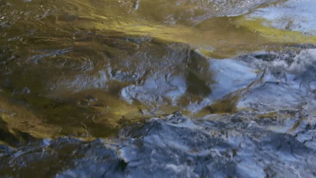 ws waves of gold & blue reflections on merced river in yosemite national park, california - merced fluss stock-videos und b-roll-filmmaterial
