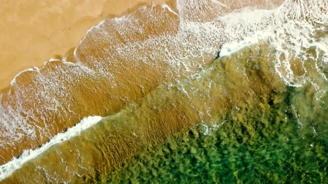 waves of the sea in australia - sydney stock videos & royalty-free footage