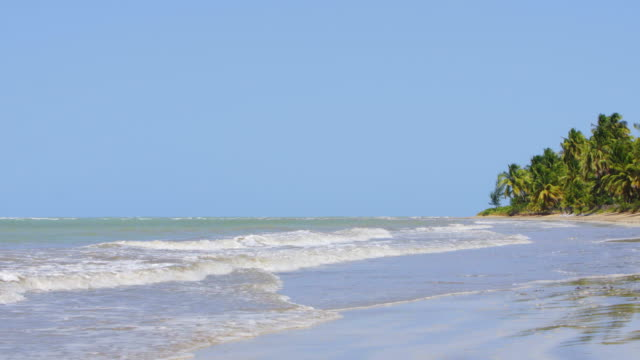 waves on japaratinga beach in alagoas - northeastern brazil stock videos and b-roll footage